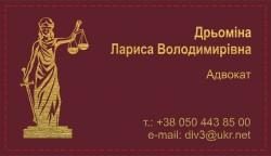 Дрьоміна Лариса Володимирівна адвокат Київ