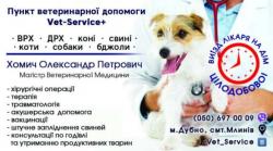 Пункт ветеринарной помощи  Vet-Service +. Ветеринар - хирург Хомич Александр Петрович