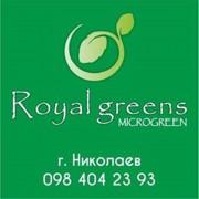 Купить Микрозелень микрогрин microgreen Украина Николаев